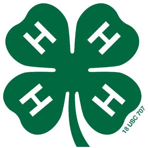 4h_mark2-green_500.jpg