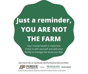 You are not the farm
